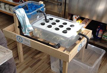 6 Aquaponik-Anlagen für Schul-Workshops