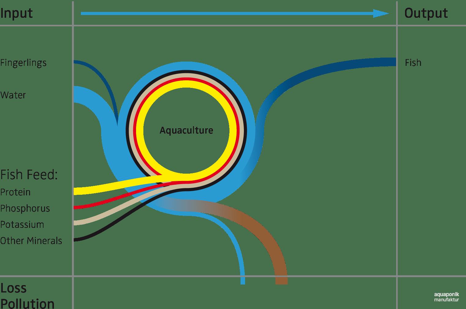 Aquakultur-Kreislauf