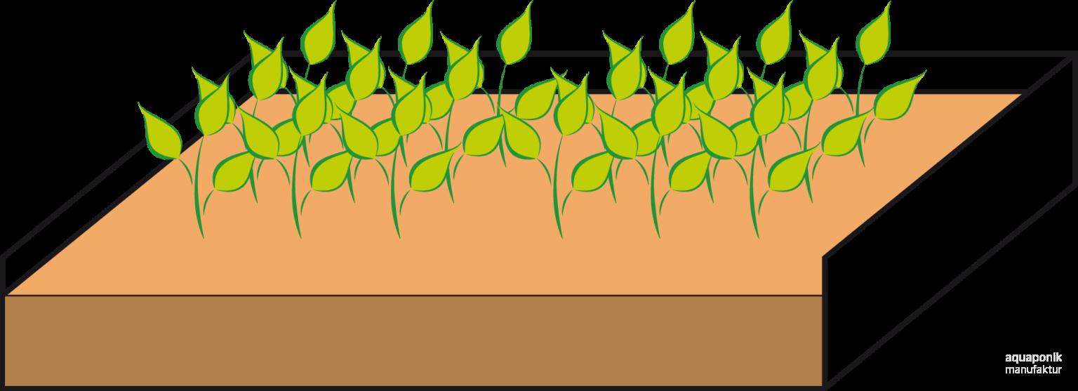 Aquaponik-Anbauweisen - Growbeds u. Ebbe-Flut-Tische